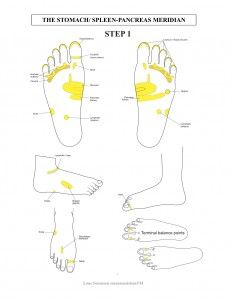 Reflexology for the Stressed Gut