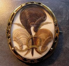 Victorian Mourning Brooch With Hair In The Prince Of Wales Feather Motif The Finest Hair Brooches Ever Produced Were Made In The And In England