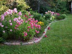 My Cottage Garden: August 2011