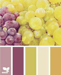 color palette by design seeds Colour Pallette, Colour Schemes, Color Combos, Color Patterns, Color Uva, Grape Color, Pantone, Design Seeds, World Of Color