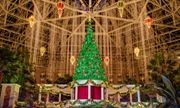 Christmas at Gaylord Palms Resort & Convention Center in Kissimmee, FL