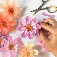 A little work in progress with some Collarette Dahlias #paperflowers . . #craftsposure #papercrafts #paperart #paperartist #madetocreate #nothingisordinary #paperflower