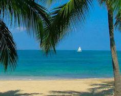 Buccaneer Resort on St. Croix in the USVI
