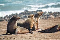 Saca tu lado m�s salvaje: 8 rincones para conectar con la naturaleza (FOTOS)