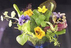 Edible flower salad picked today at www.maddocksfarmorganics.co.uk in an unseasonably mild January.