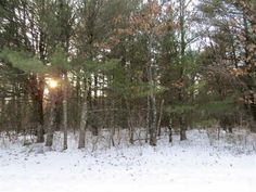 This is a nicely wooded and level parcel for building your dream home or summer camping.  Has a good mix of trees and is located near Petenwell Lake and snowmobileATV trails.  Quiet setting yet very convenient to all the amenities that the area offers.