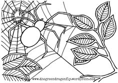 Spider coloring page | Coloring-Animals & Bugs | Pinterest | Spider ...