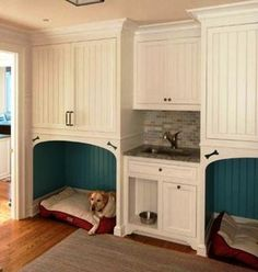 Nice dog beds under storage  by utility sink in laundry room/ dog room... Tiled.  No destruction by dogs unless they end up like Fox and chew tubes, hoses Etc... Must make sure all wires and tubes are tucked away and inaccessible by a dog like fox.