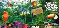 Welt-Vogelpark Walsrode - Eintritt und Hotel zum günstigen Preis // I have been to this park!