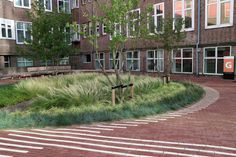Signature landscape Place: Amsterdam, NL Client: University of Amsterdam Architect: AHMM Architects, London Project management and construction:. Courtyard Landscaping, Brick Laying, Elm Tree, Amsterdam Canals, Inside Outside, Landscape Design, Paths, Environment, Backyard