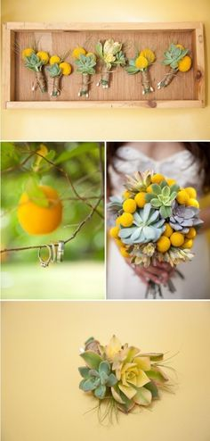 This is a nice combination of succulents and yellow billy balls. Natural touches on boutonnieres is sweet