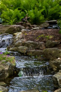 The Pond-free photo Gallery on Atlantic Water Gardens' website is full of great backyard landscaping inspiration. Adding a water feature creates a whole new dimension to your outdoor space!