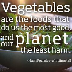 vegetables are the foods that do us the most good, and our planet the least harm #vegetarian #vegan