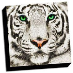 tigergifts.net