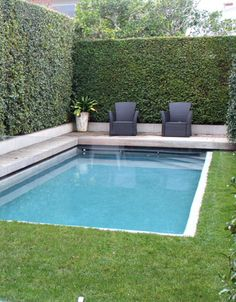 inground swimming pool wrapped around with existing lawn and hedgegrow Swimming Pool Landscaping, Small Swimming Pools, Small Pools, Swimming Pool Designs, Backyard Landscaping, Lap Pools, Indoor Pools, Pool Decks, Small Backyard Design