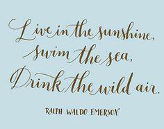 Day 206: Live in the sunshine, swim the sea, drink the wild air. -Ralph Waldo Emerson