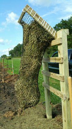 Fun idea with a Hay Chix DIY net!