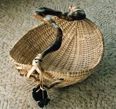 Driftwood Basket with twisted root, beach rock and lava.