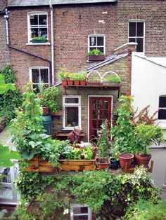 """motherearthnewsmag: """"Small-Space Gardening Growing food in small spaces can be fun and productive — you just need a little sunshine and some imagination. By Roger Doiron Photo: Verticalveg/Sarah..."""