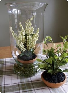 faux plants and faux dirt -- greenery that I can't kill. Love it!! Love the hurricane!
