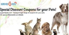 Pet Food Direct offers you good quality food for your pets, best coupons, promo codes, code.Coupon4pets brings the best and latest