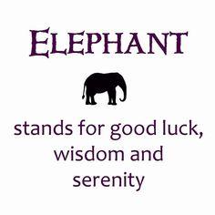 Elephant...