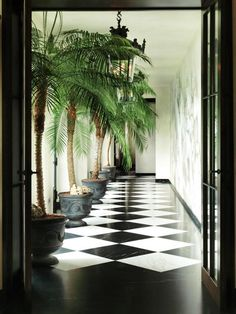 Interior decorating styles 152840981085383615 - FUTURE Tropical Chic interior decor with a touch of classical elemts Source by uglyducklingdiy Interior Tropical, Tropical Home Decor, Tropical Houses, Tropical Colors, Tropical Furniture, Tropical Leaves, Tropical Vibes, Tropical Kitchen, Tropical Style