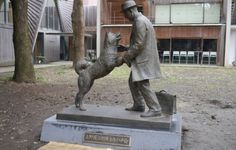 On March a new statue was dedicated to the memory of Hachiko, Japan's most famous dog. [img] For those not familiar with the story: Hachiko. Hachi A Dogs Tale, Hachiko Statue, Dog Pictures, Cute Pictures, Japanese Dogs, Japanese Akita, Bear Attack, Famous Dogs, Loyalty