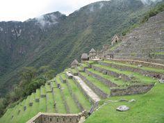 La ferme ancienne à Machu Picchu - Peru