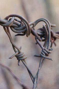 Barbed wire heart.  How sweet! I love it.