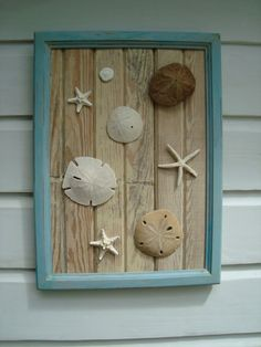 Sand Dollar & Starfish Framed Art on Reclaimed by MyHoneypickles