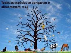 estudo Bíblico de daniel 4 http://esbocopregacao.blogspot.com/