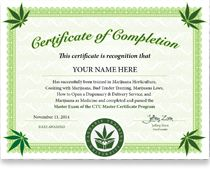 Online Marijuana Certificate. Earn your cannabis cooking certificate. Get your cannabis business certificate, plus become a master of marijuana certification holder. Pass your exam and become a certified marijuana grower. When you compare marijuana schools, no cannabis school has as much information for as low of a price as Cannabis Training University. Anyone can sign up, from anywhere in the world, regardless of the cannabis laws where you live. You can learn on your cell phone, laptop!