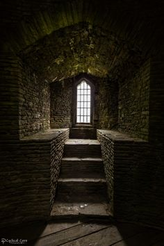 Medieval Castle Interior Seeing Night Reviews Author Guest