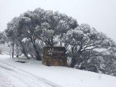 Morning snow on Mt Buller, Victoria Taken by @Mt Buller Australia 30/04/2014
