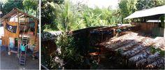 Que ver en Costa Rica - Hostel Flutterby Uvita