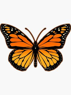 Birds_Butterfly_Flower Monarch Butterfly Sticker by Garaga Drawing BirdsButterflyFlower butterfly butterfly Drawing Garaga Monarch Sticker Butterfly Illustration, Butterfly Drawing, Butterfly Wallpaper, Drawings Of Butterflies, Butterfly Painting Easy, Monarch Butterfly Tattoo, How To Draw Butterfly, Mariposa Butterfly, Butterfly Canvas