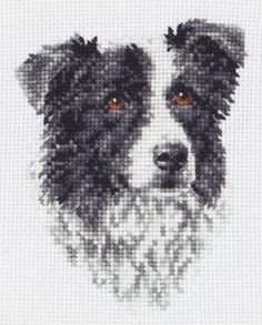 Border Collie Cross Stitch Kit £10.75 | Past Impressions | Anchor