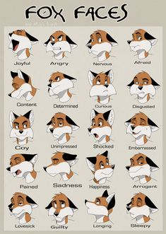 this is awesome because I could never get the muzzle thing