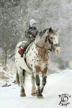 Oh just riding my enormous, gorgeous horse in full camo...