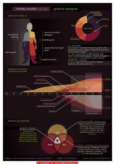 Cv Infographic 34 - http://infographicality.com/cv-infographic-34/
