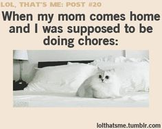 exxxxxcept i dont do that and i actually get it done before my parents come home.. or usually but its still funny c: