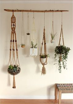Hydroponic Gardening Ideas Hanging plants - Macrame is about knots in several patterns. Macrame is a simple art form to acquire the hang of. One specific macrame finds an owl made from twine springs to mind. Make sure to knot your yarn on th… Indoor Garden, Indoor Plants, Air Plants, Cactus Plants, Indoor Plant Decor, Plant Wall Decor, Hanging Plant Wall, Indoor Cactus, Garden Planters