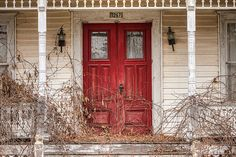Vines take over the porch of this abandoned house.  LOVE the red door!