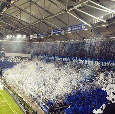 Schalke 20150221001 mm