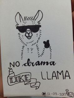 LLAMA???🐘