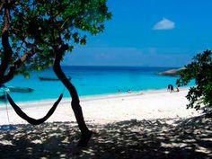Hammock on the beach of Similan Island, Thailand...