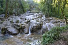 2015 Photos from the guided walking holiday in the Jura, a region with historic villages and great wine Walking Holiday, Medieval Town, Holiday Photos, Alps, Waterfall, Explore, Outdoor, Law School, Viajes