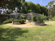 Vegetable Garden with Chicken Coup and Orchard