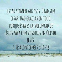 Nuestro Gozo solo debe depender de la certeza en las promesas de Cristo Jesús